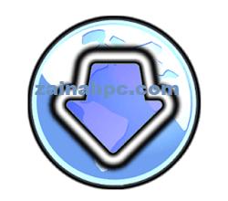 Bulk Image Downloader zainabpc.comCrack -